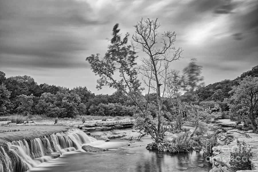 Black and White Photograph of Link Falls at Bull Creek District Park Greenbelt - Austin Texas by Silvio Ligutti