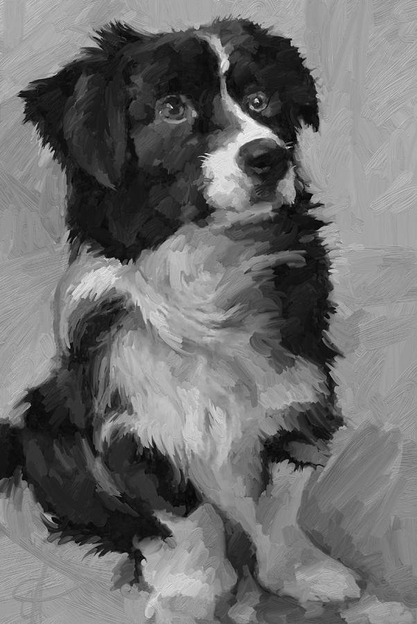 Border Painting - Black and White Pup by Scott Waters