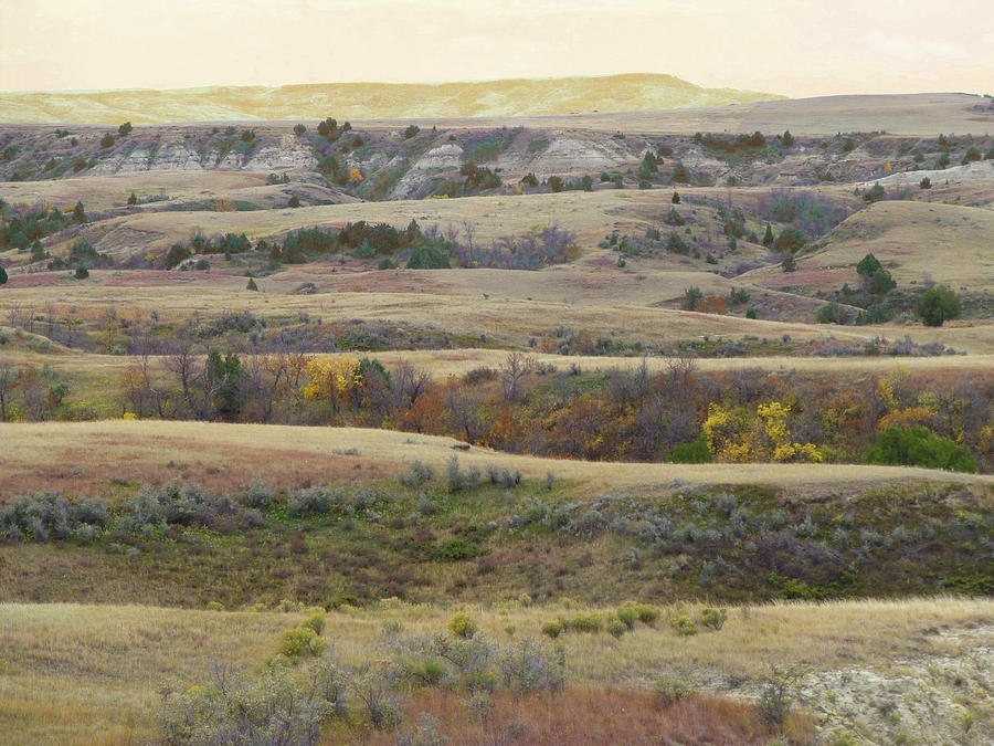 North Dakota Photograph - Black Butte September Reverie by Cris Fulton