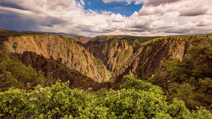 Black Canyon of the Gunnison by Brenda Jacobs