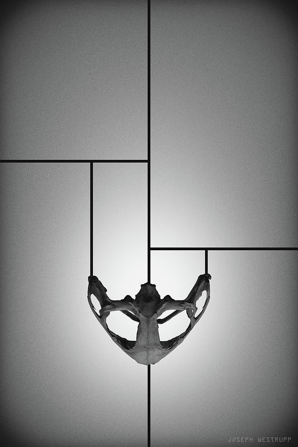 Abstract Photograph - Black Chalice - Abstract Geometric Bone Art by Joseph Westrupp