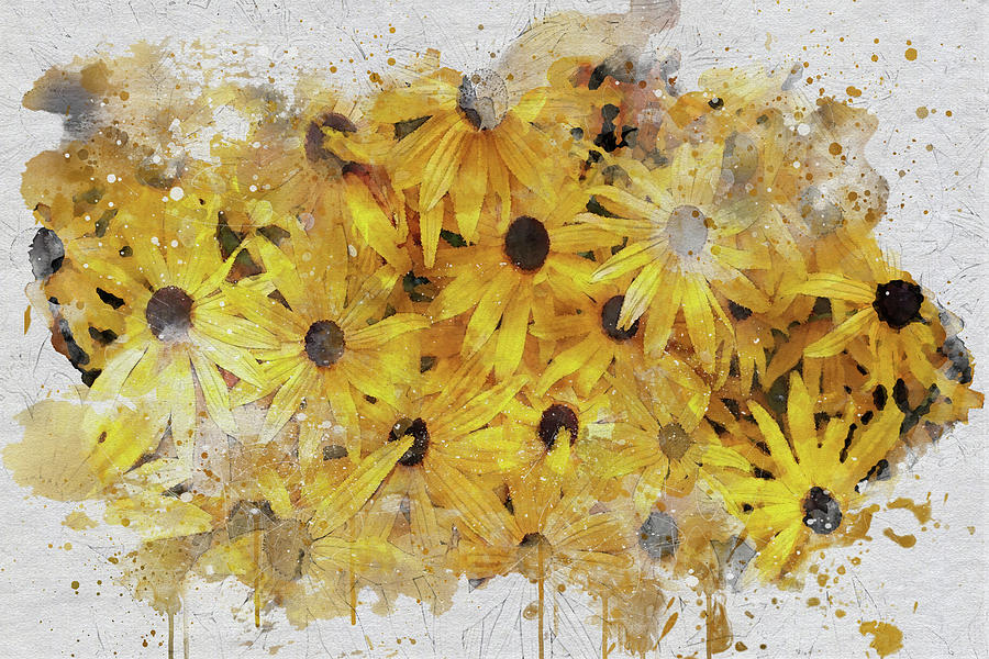 Black-eyed Susans by Marilyn Wilson