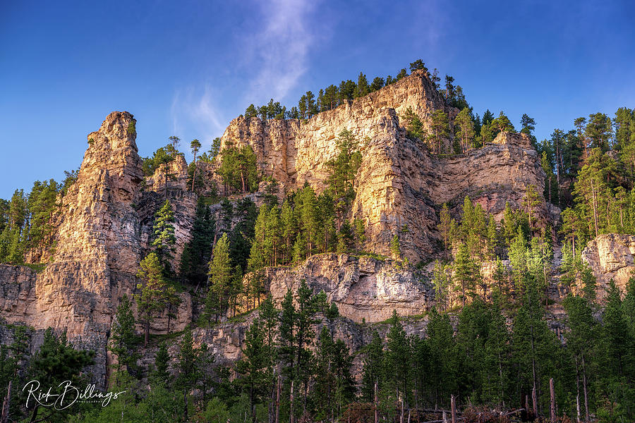 Black Hills Mountain No 1095 by Rick Billings