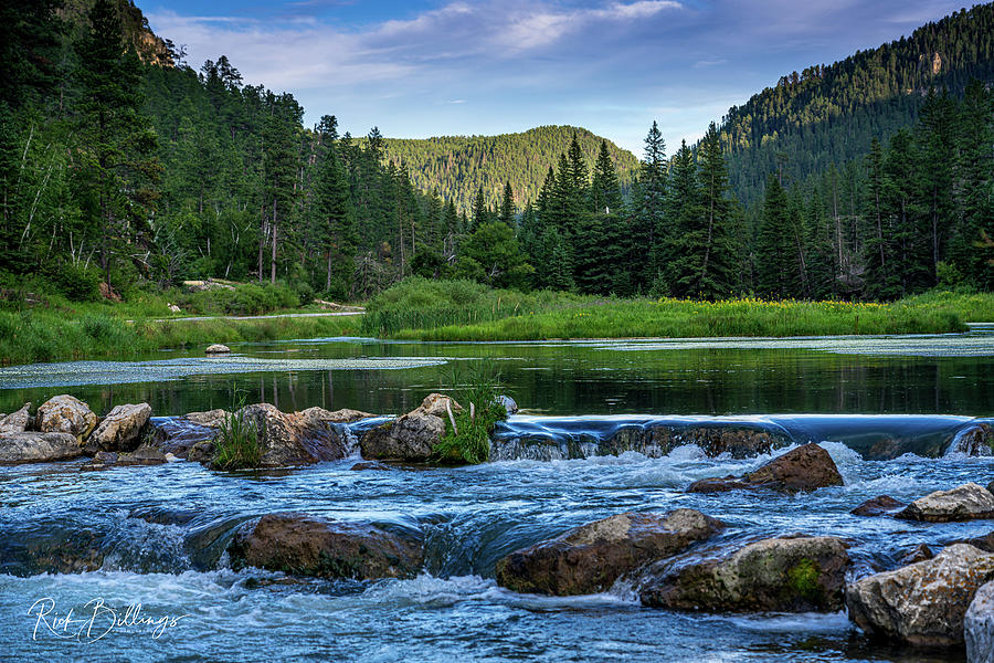 Black Hills Stream No 1096 by Rick Billings
