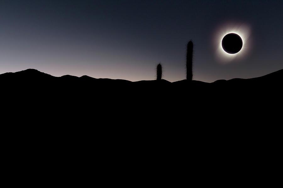 Black Hole Sun by Erika Valkovicova