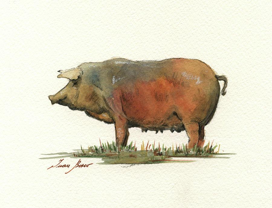 Jamon Iberico Painting - Black Iberian Pig by Juan Bosco