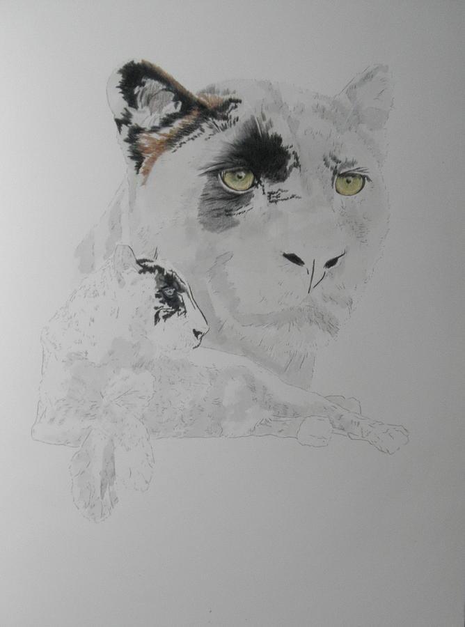 Black Leopard x2 by Barbara Keith