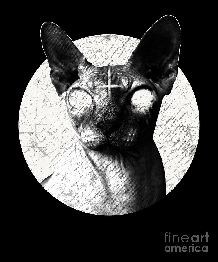 d9b2c9ce0 Black Metal Sphynx Cat Goth Death Metal T Shirt Hell Rock Drawing ...