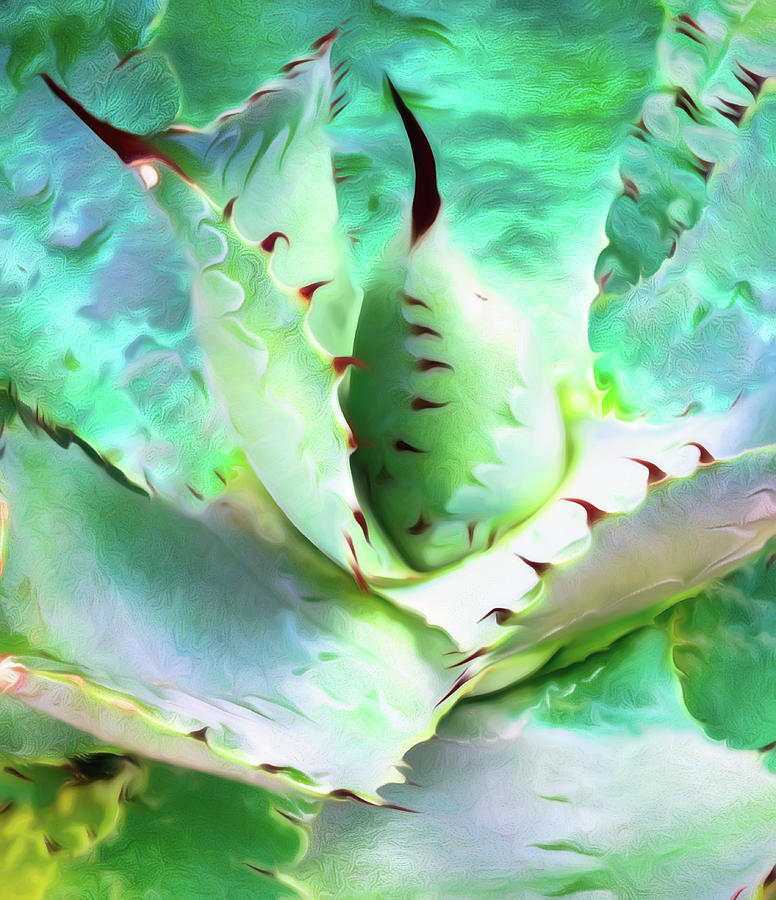 Black Tipped Cactus Abstract by Gary Slawsky