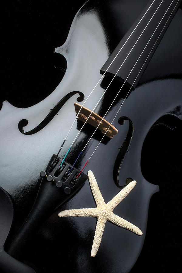 Black Violin And Starfish by Garry Gay