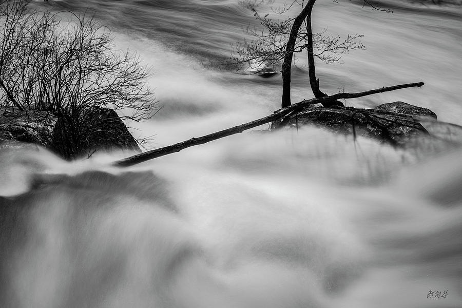 Blackstone River XXXI BW by David Gordon