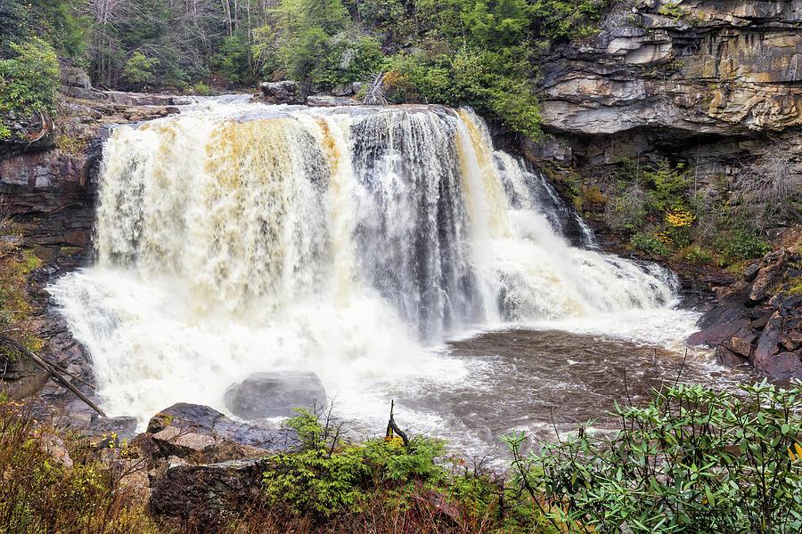 Blackwater Falls by Fran Gallogly