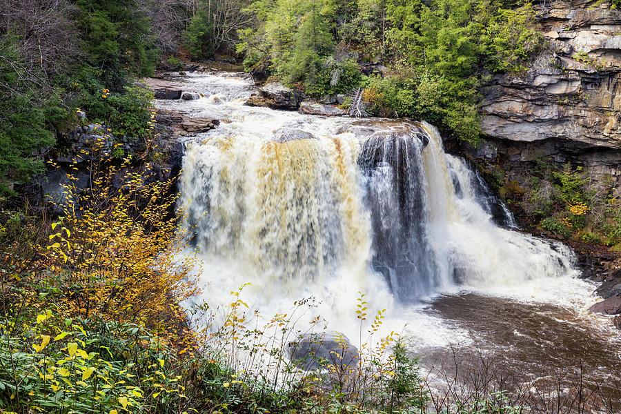 Blackwater Falls State Park by Fran Gallogly