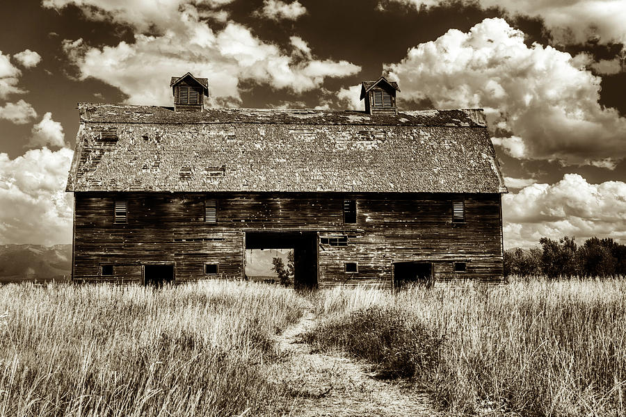 Blasdel Barn in Sepia by Mark Kiver