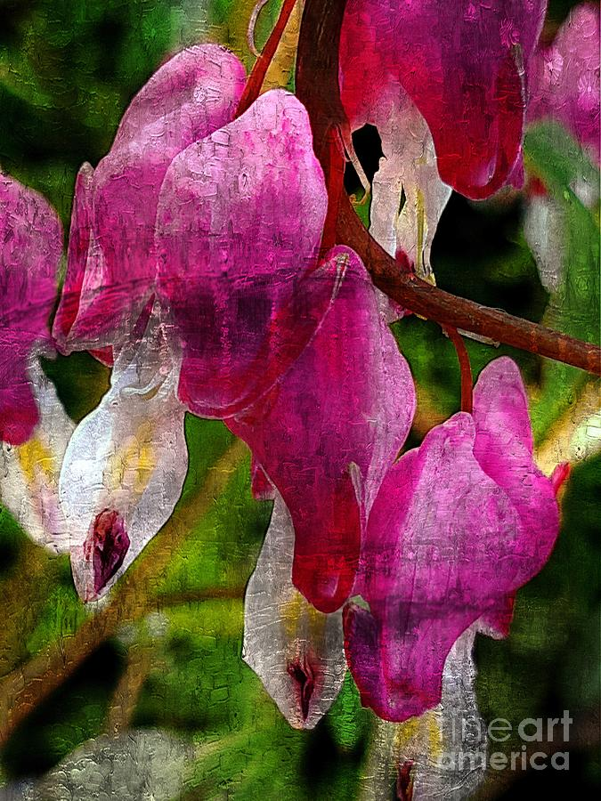 Bleeding Hearts  by Jolanta Anna Karolska