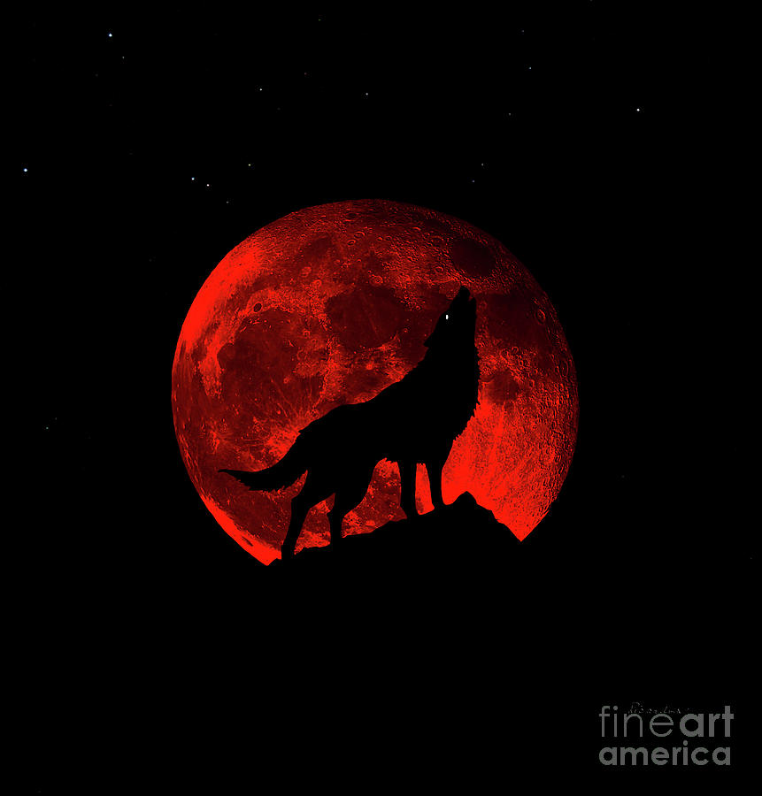 Blood Red Wolf Supermoon Eclipse 873l by Ricardos Creations