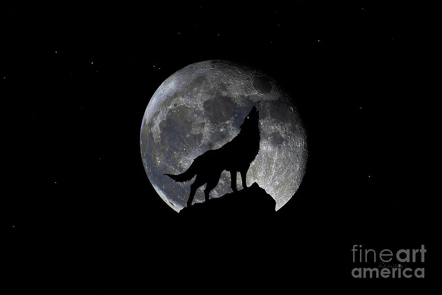 Pre Blood Red Wolf Supermoon Eclipse 873p by Ricardos Creations
