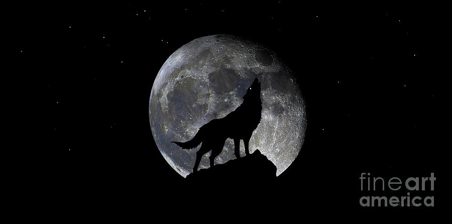 Pre Blood Red Wolf Supermoon Eclipse 873r by Ricardos Creations