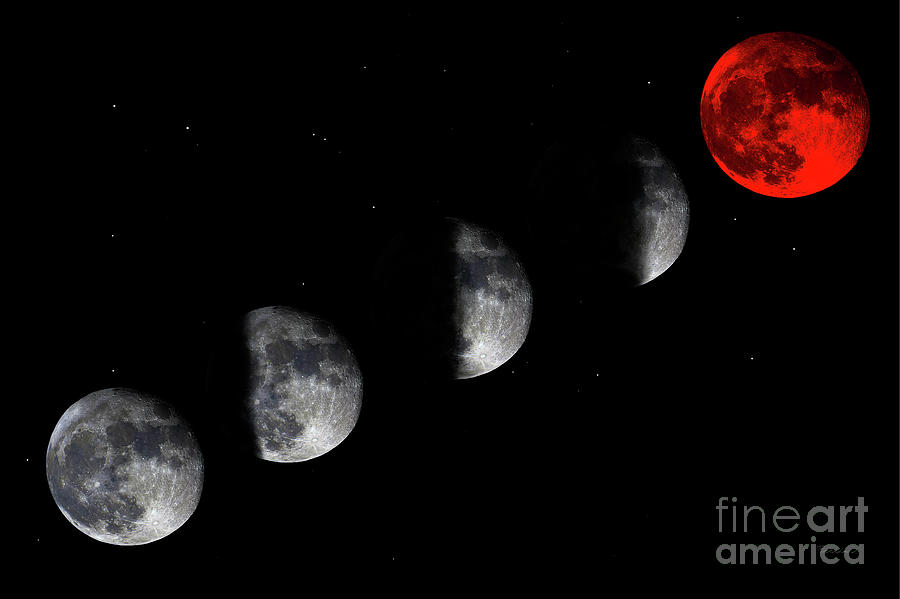 Blood Red Wolf Supermoon Eclipse Series 873i by Ricardos Creations