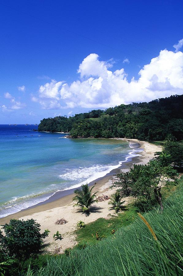Bloody Bay, Tobago, Caribbean Photograph by Buena Vista Images
