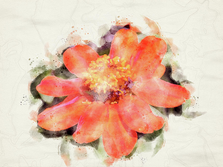 Bloom #15 by George Pennington