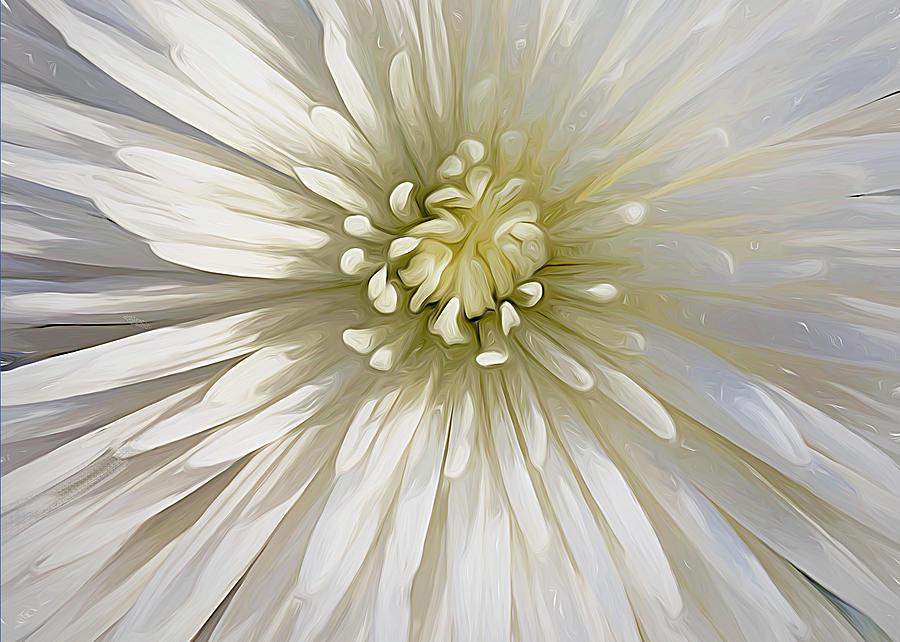 Bloom - Landscape by Cindy Greenstein
