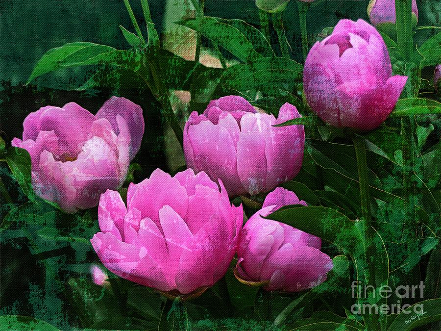 Image result for peonies bush painting