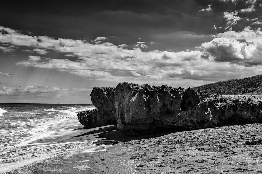 Hobe Sound Photograph - Blowing Rock Preserve 1 by Liz Keeler