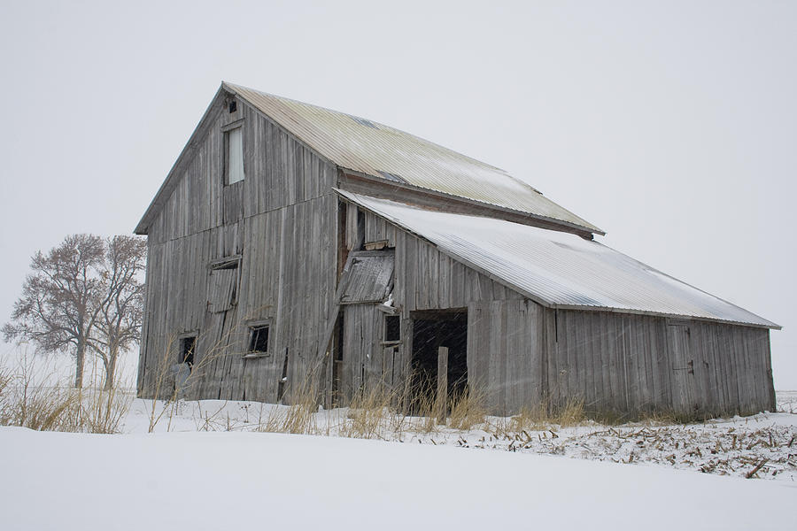 Full Color Photograph - Blowing Snow Barnstead by Dylan Punke