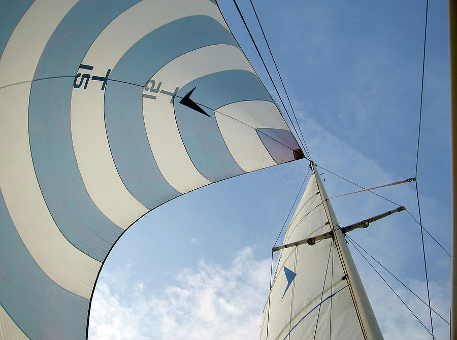 Blue And White Spinnaker Photograph by Laura A. Watt