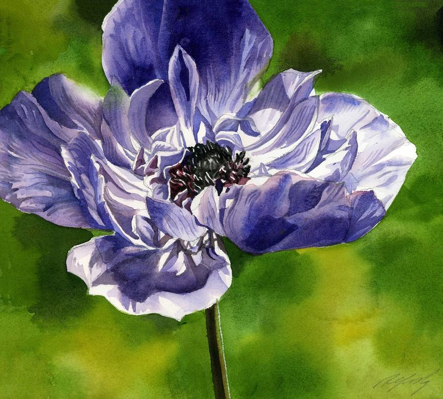 blue Anemone by Alfred Ng