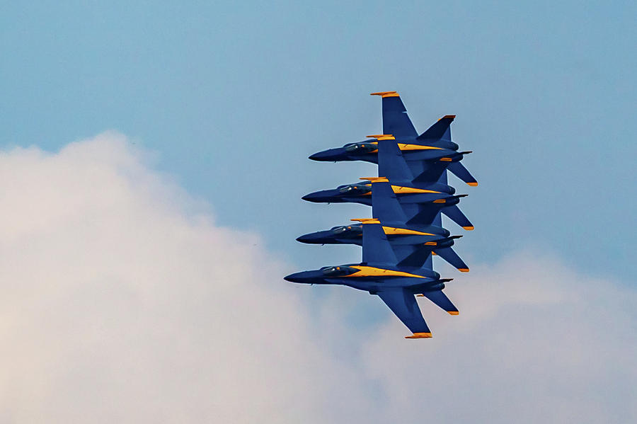 Blue Angels Stack of 4 by Donna Corless