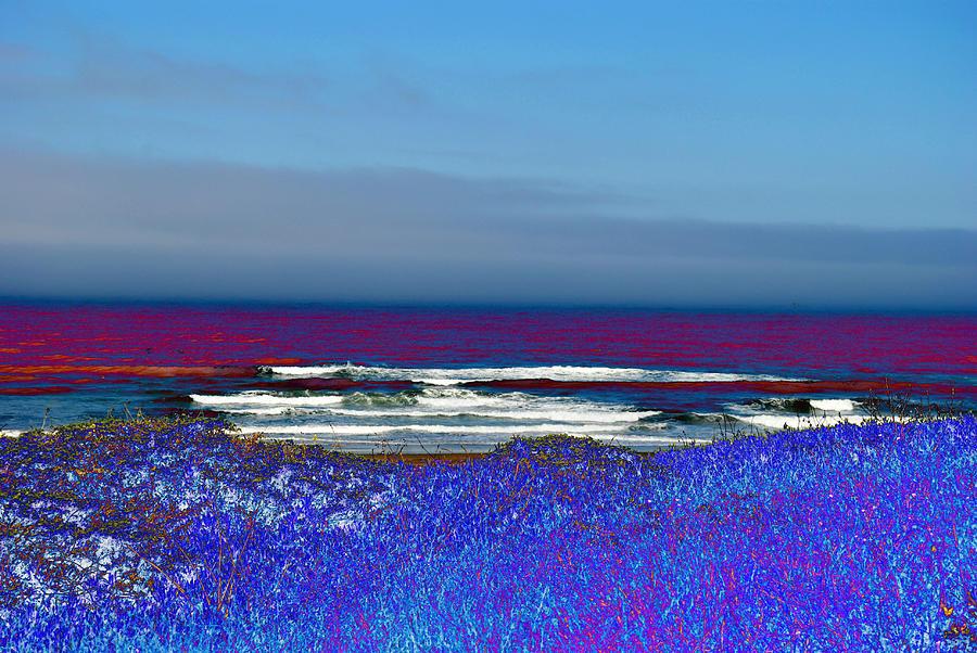 blue beach by Steven Wills