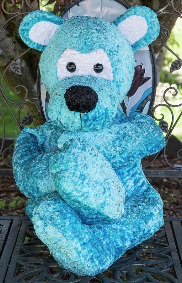 Blue Bear by Ron Roberts