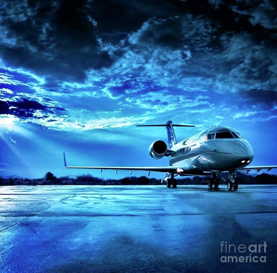 Blue Bird  by EliteBrands Co