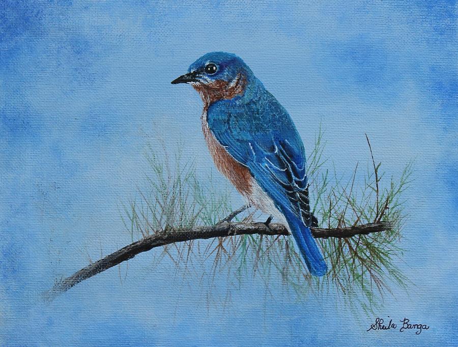 Blue Bird by Sheila Banga