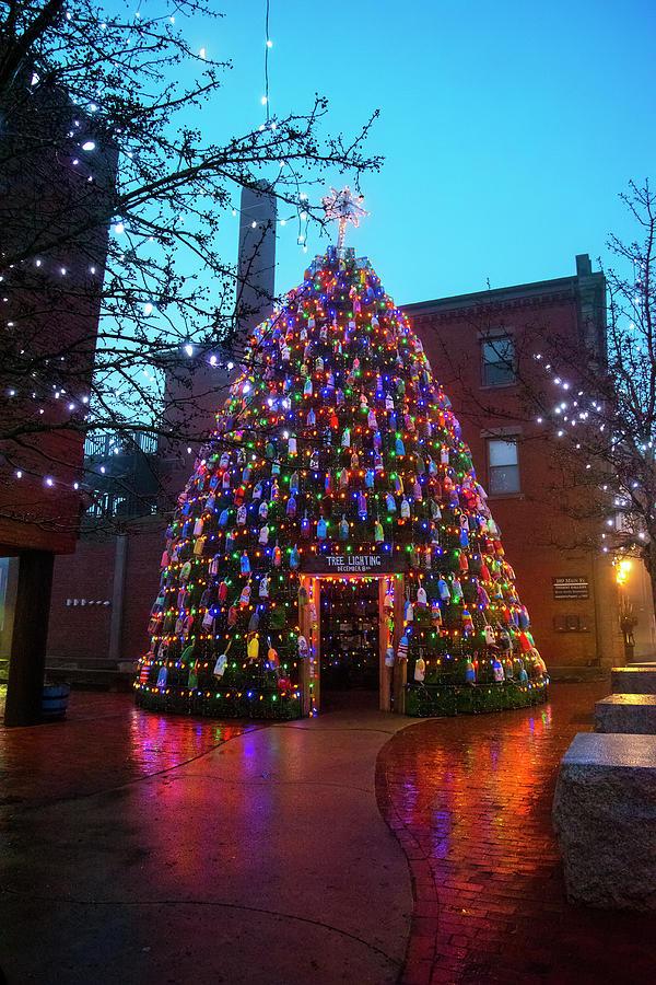 Blue Christmas Morning - Gloucester, Ma. by Joann Vitali