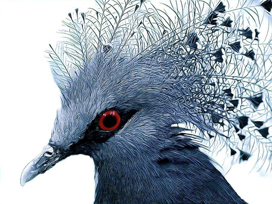 Blue Crowned Pigeon by Sarah Hanley