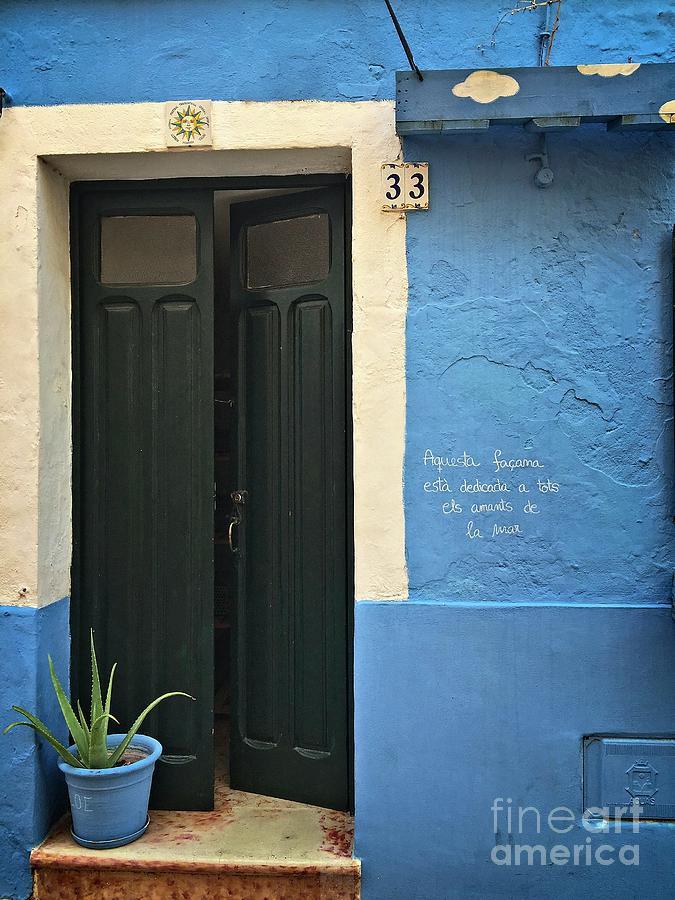 Blue Facade Green Door Flower Pot by Dee Flouton