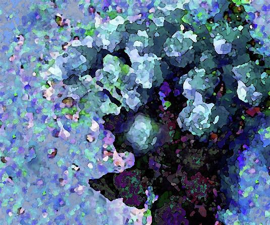 Blue Floral Fiesta by Corinne Carroll