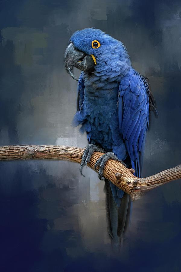 Blue Gem by Kelley Parker