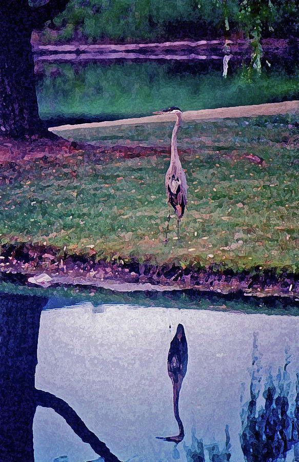 Blue Heron reflection on the meaning of life by Andy Lawless
