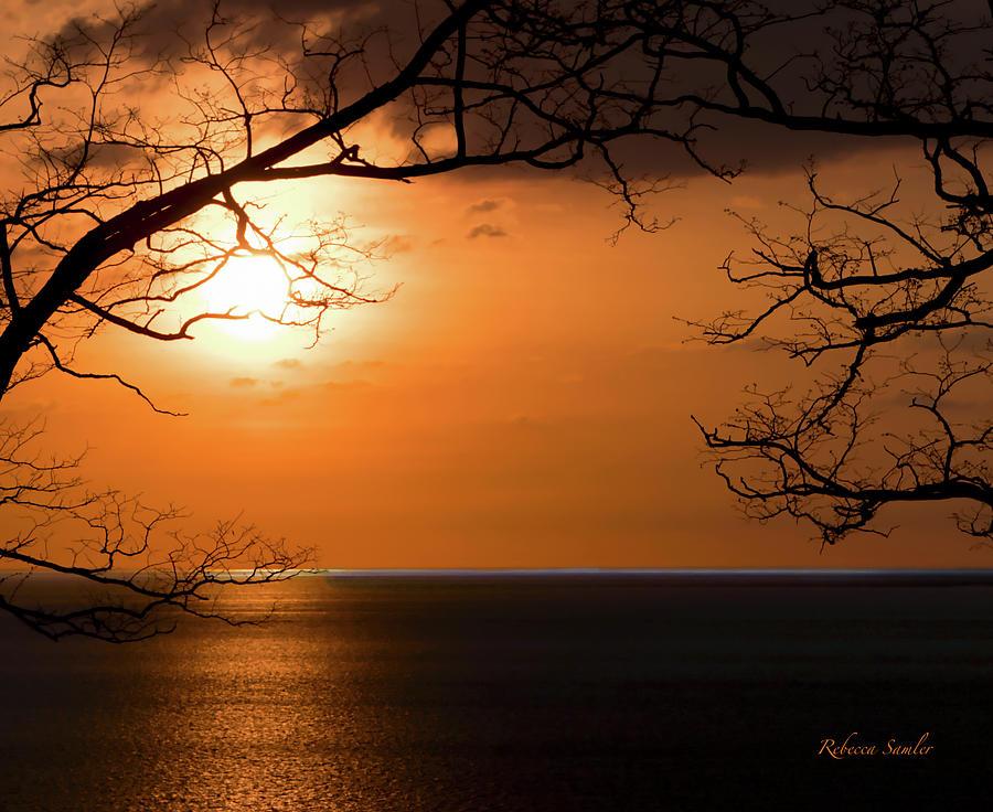 Blue Horizon by Rebecca Samler