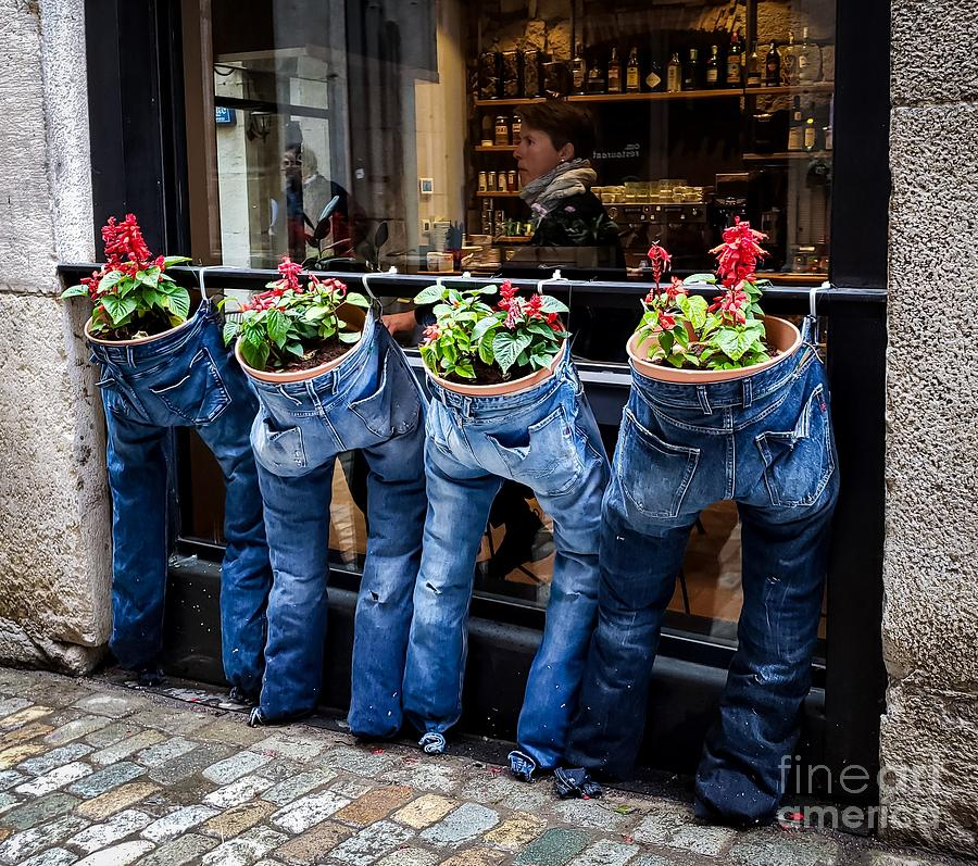 Blue Jeans by Mary Capriole