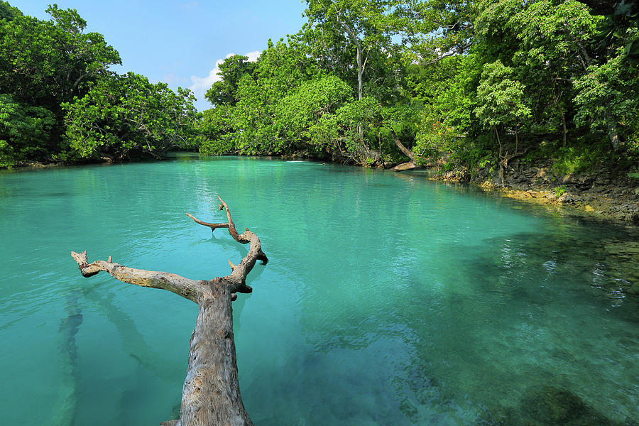 Blue Lagoon, Efate Island, Vanuatu Photograph by Peter Unger