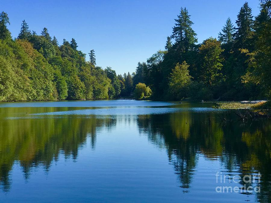 Blue Lake Reflections  by Suzanne Lorenz
