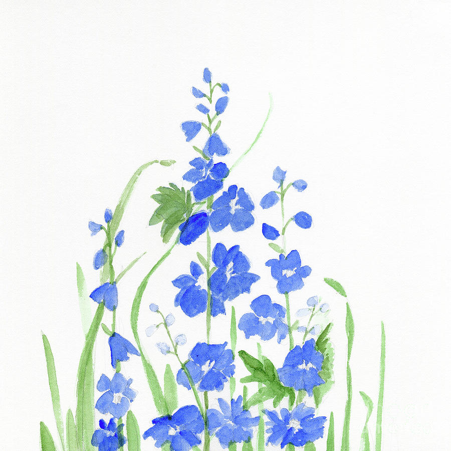 Blue Larkspur  by Laurie Rohner