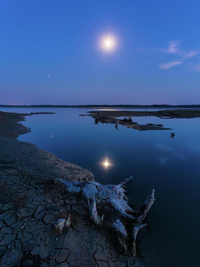 Blue moonlight by Davor Zerjav