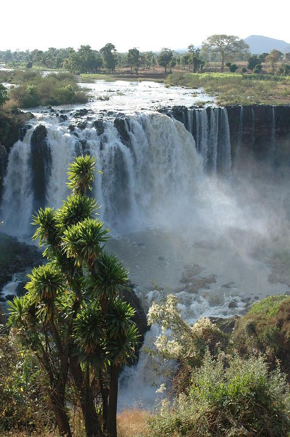 Blue Nile Falls, Ethiopia Photograph by Christophe cerisier