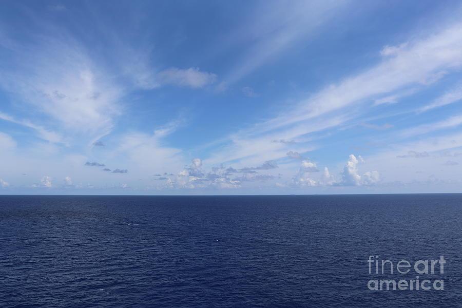 BLUE PARADISE by Barbra Telfer